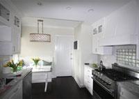 Lake Shore Drive Kitchen Remodel